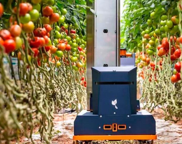 Роботы для оценки урожая Plantalyzer готовы к работе